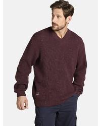 dunkelroter Pullover mit einem V-Ausschnitt von Jan Vanderstorm