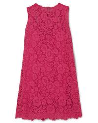 fuchsia gerade geschnittenes Kleid aus Spitze von Dolce & Gabbana