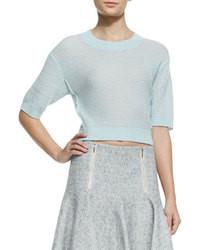 hellblauer kurzer Pullover