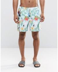 mintgrüne bedruckte Shorts