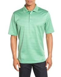 mintgrünes horizontal gestreiftes Polohemd